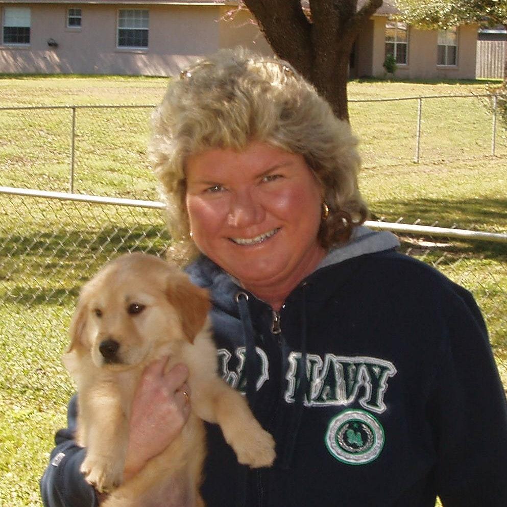 Venetia's dog day care