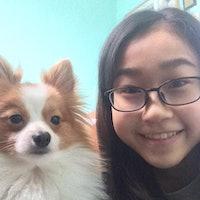 Saeko's dog boarding