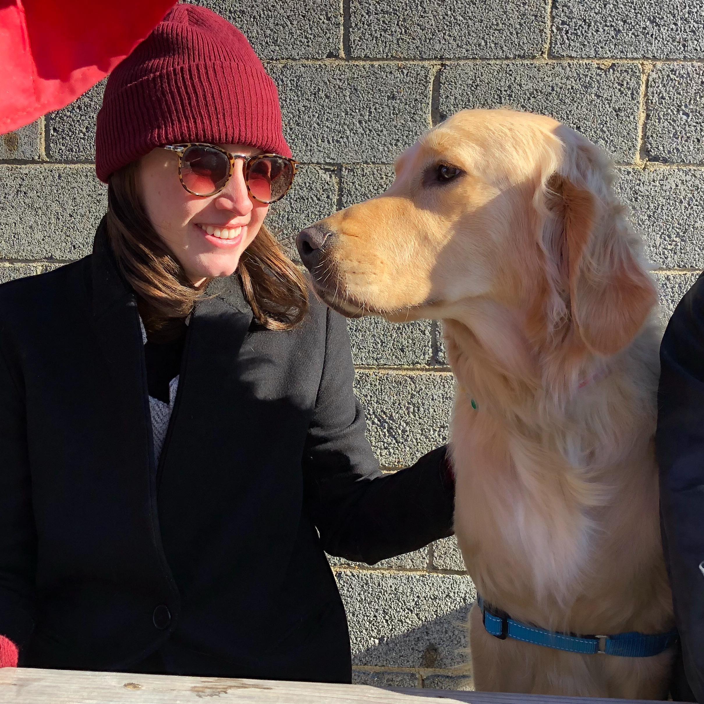 Erin's dog boarding