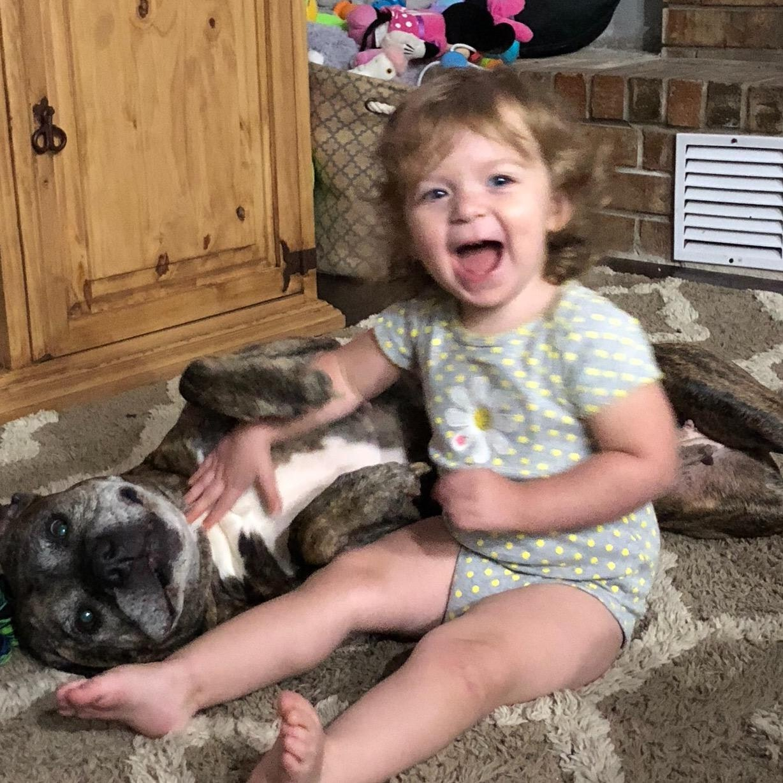 Cheyenne's dog day care