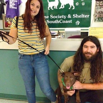 Trisha's dog day care