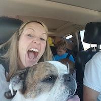 Kristin's dog day care