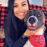 Soriya's dog day care