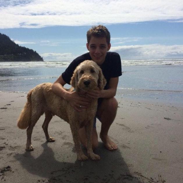 Marcco's dog boarding