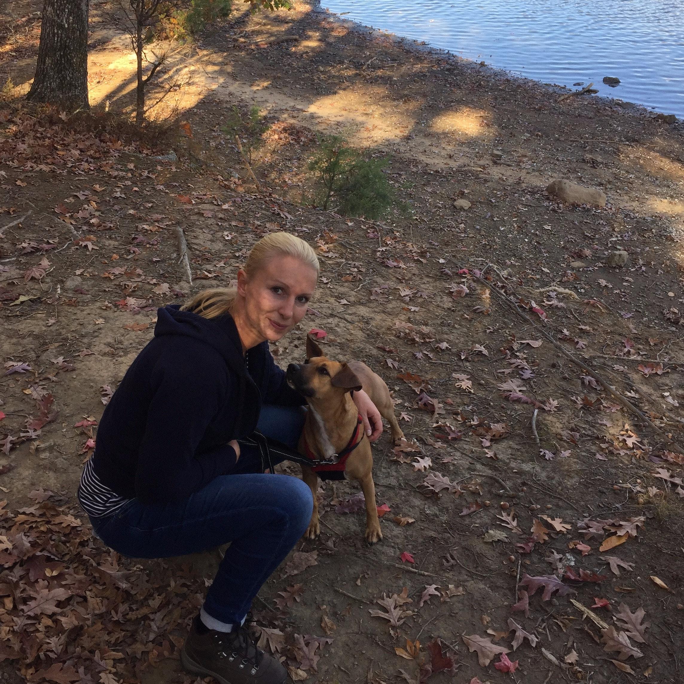 Lysann's dog day care