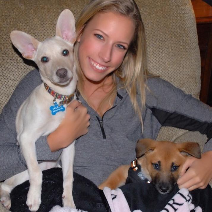 Adelle's dog day care