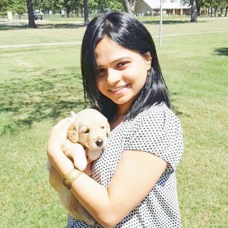 Shweta's dog day care