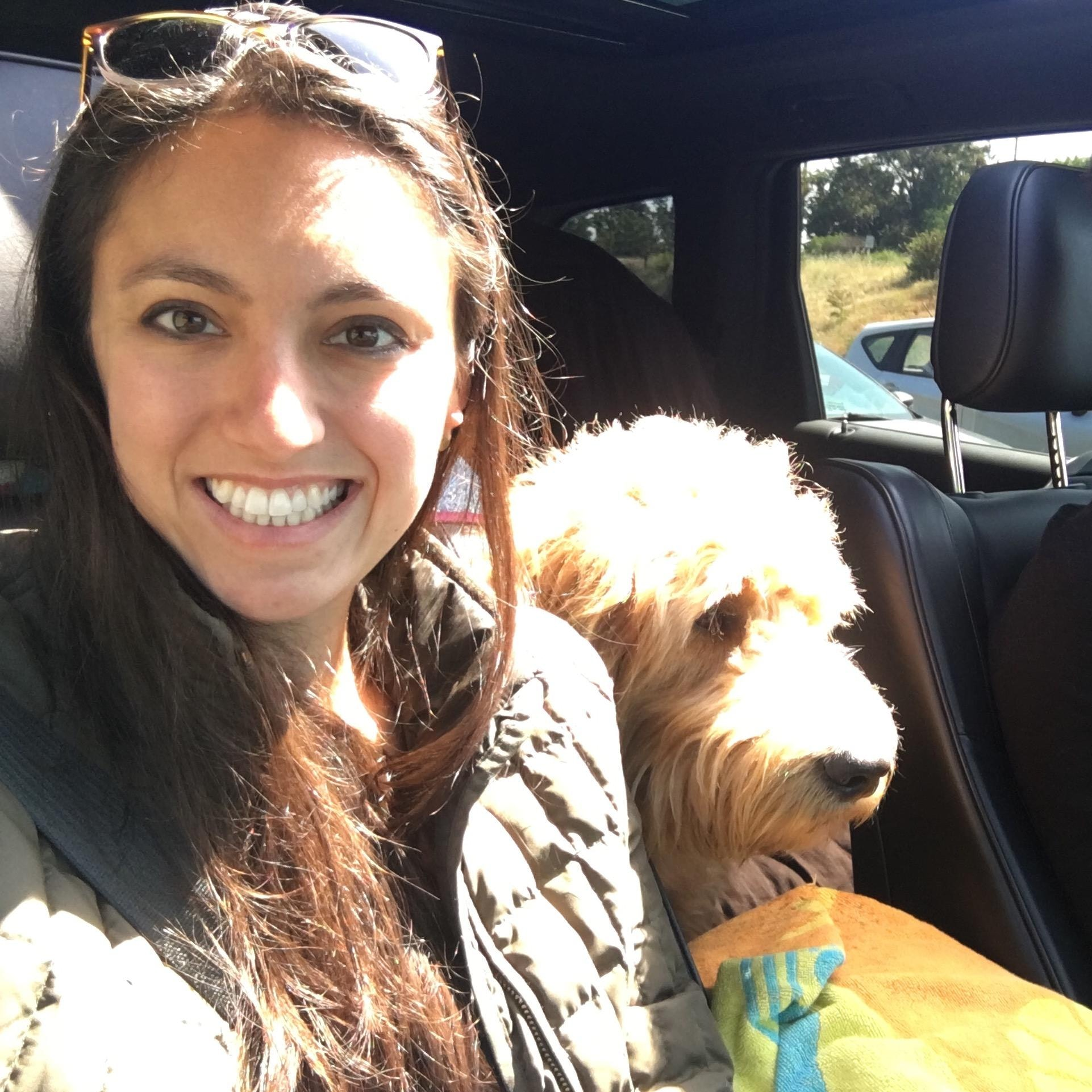 Danielle & Danny's dog boarding