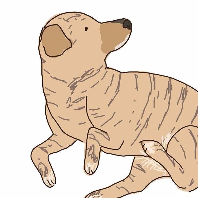 dog walker Murphy