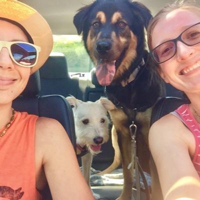 Kassi's dog boarding