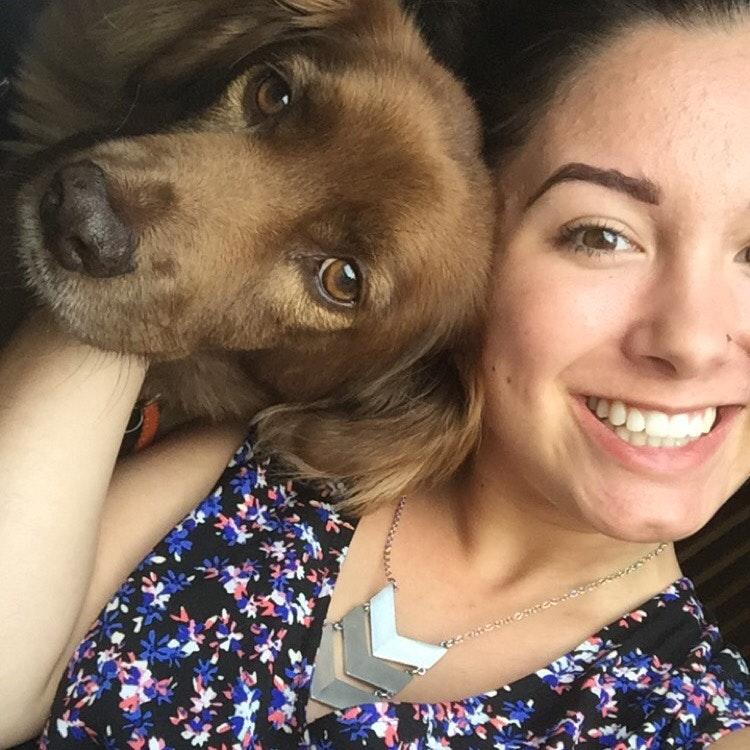 Mariah's dog day care