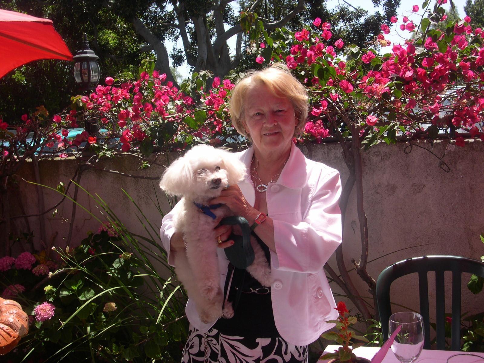 Raymonde's dog day care