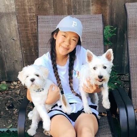 Sunny's dog day care