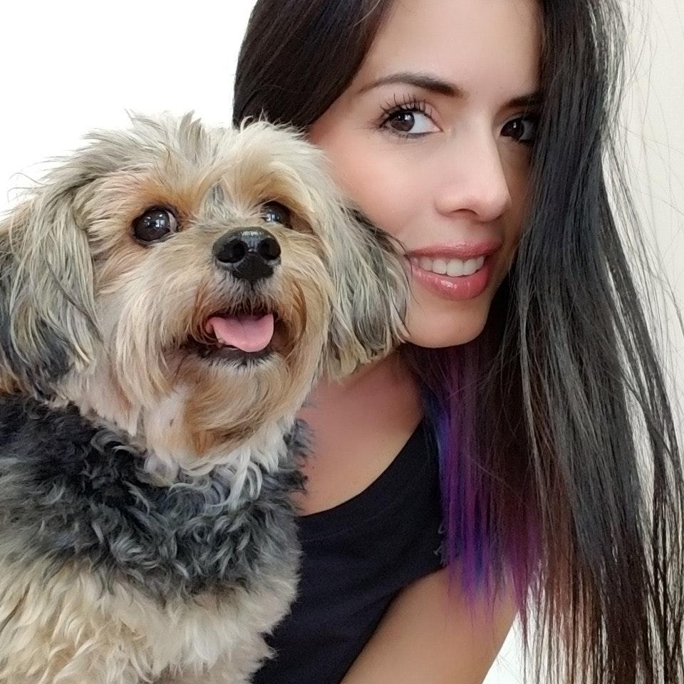 Juliana's dog day care