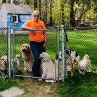 Elaine Anderson's dog boarding