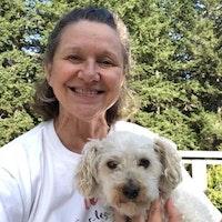 Vicki's dog day care