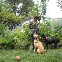 dog walker Marion