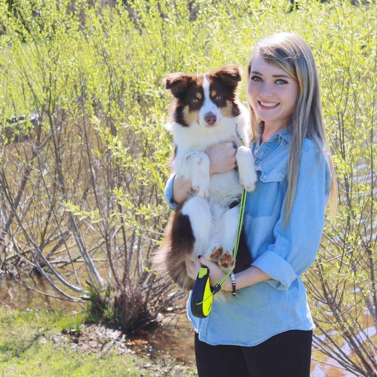 Madisyn's dog day care