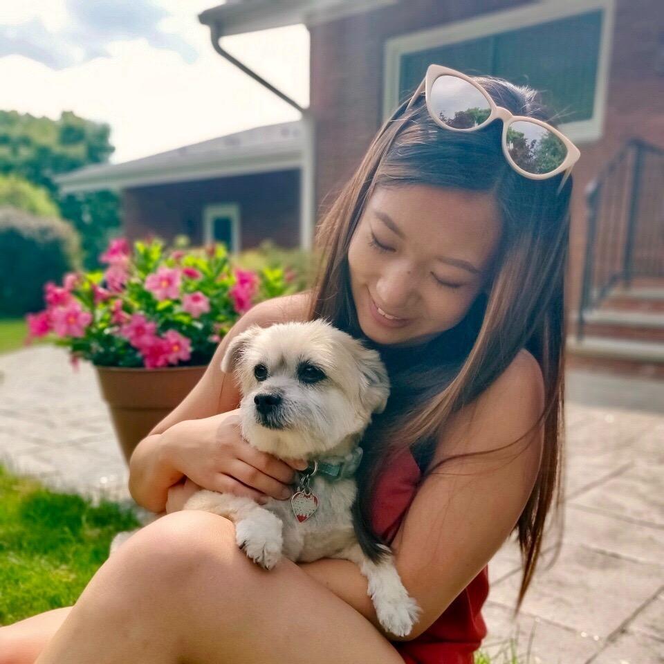 Paula's dog boarding