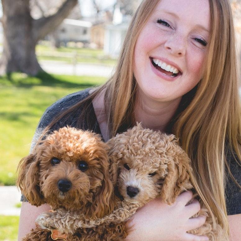 Terra's dog day care