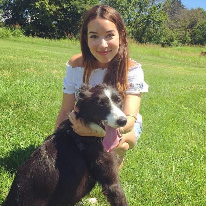 Angelica's dog boarding