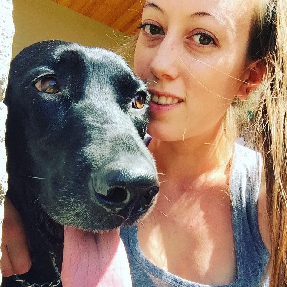 Kara's dog day care