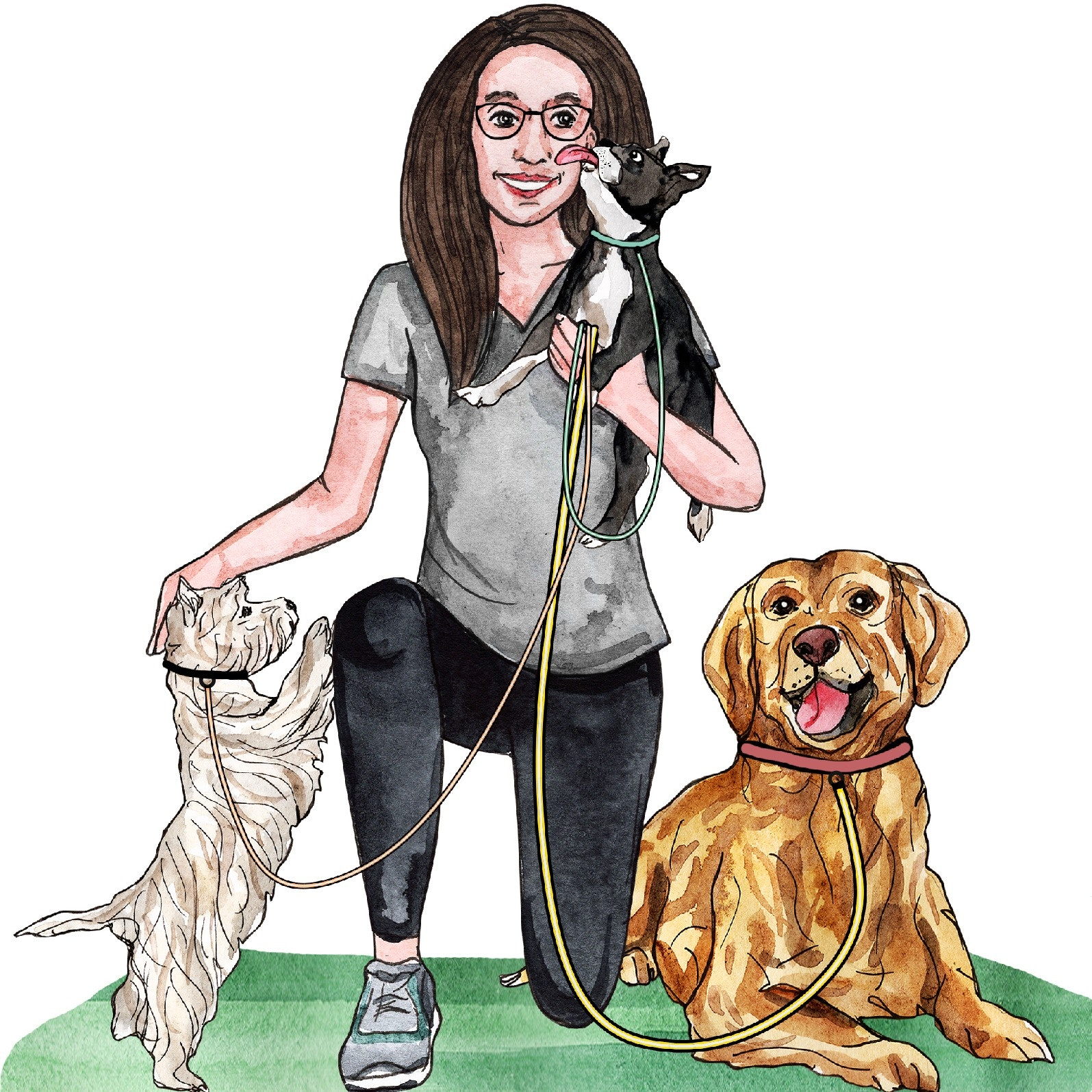 Charity's dog day care