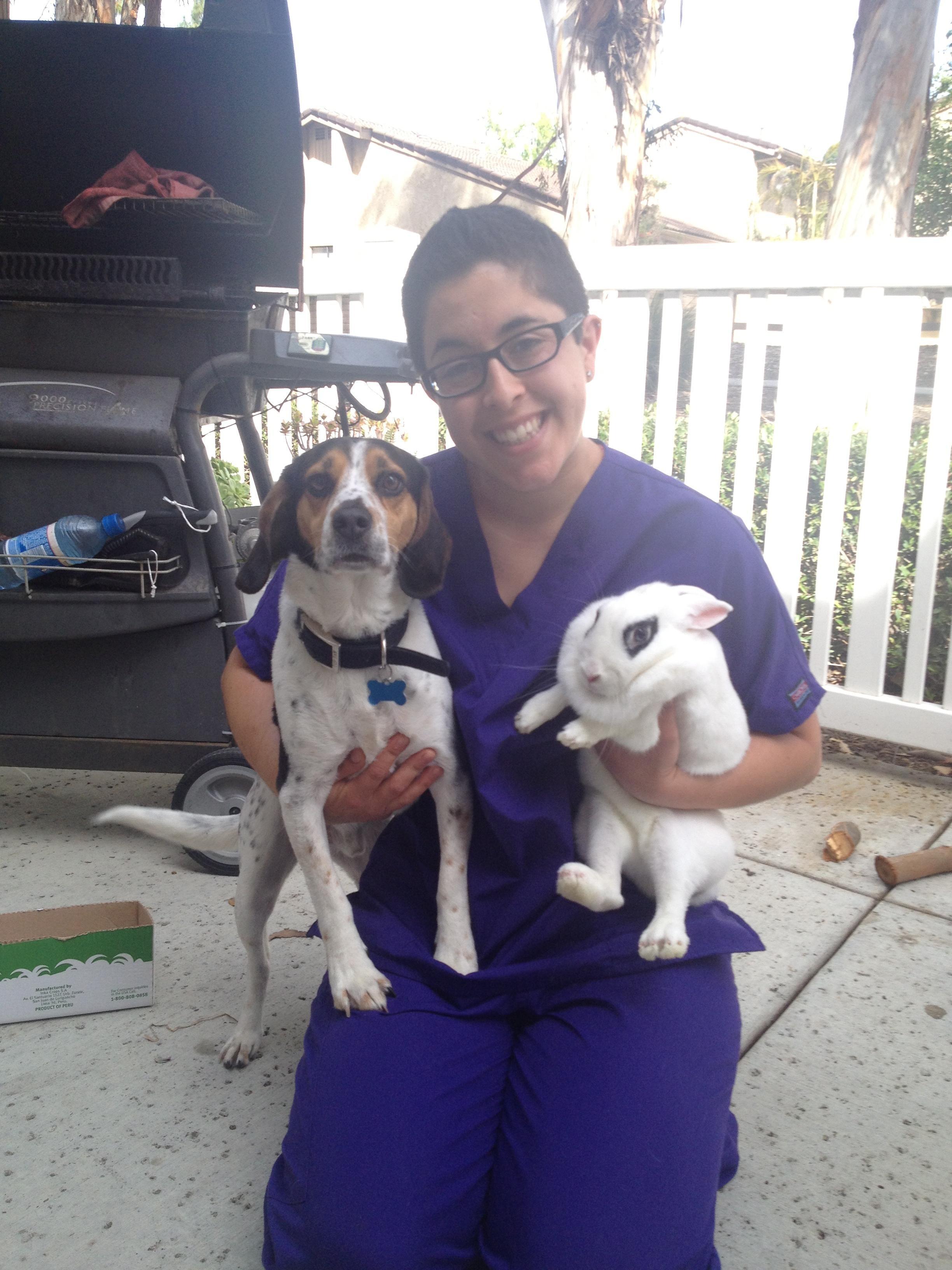 Carla's dog day care