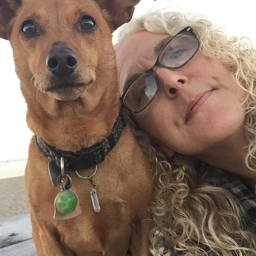 Lisa's dog day care