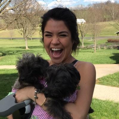 Dinah's dog day care
