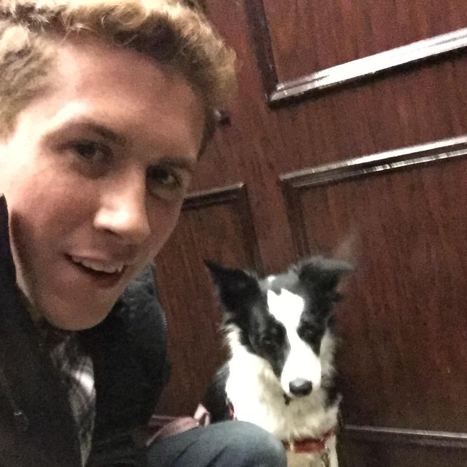Jackson's dog boarding