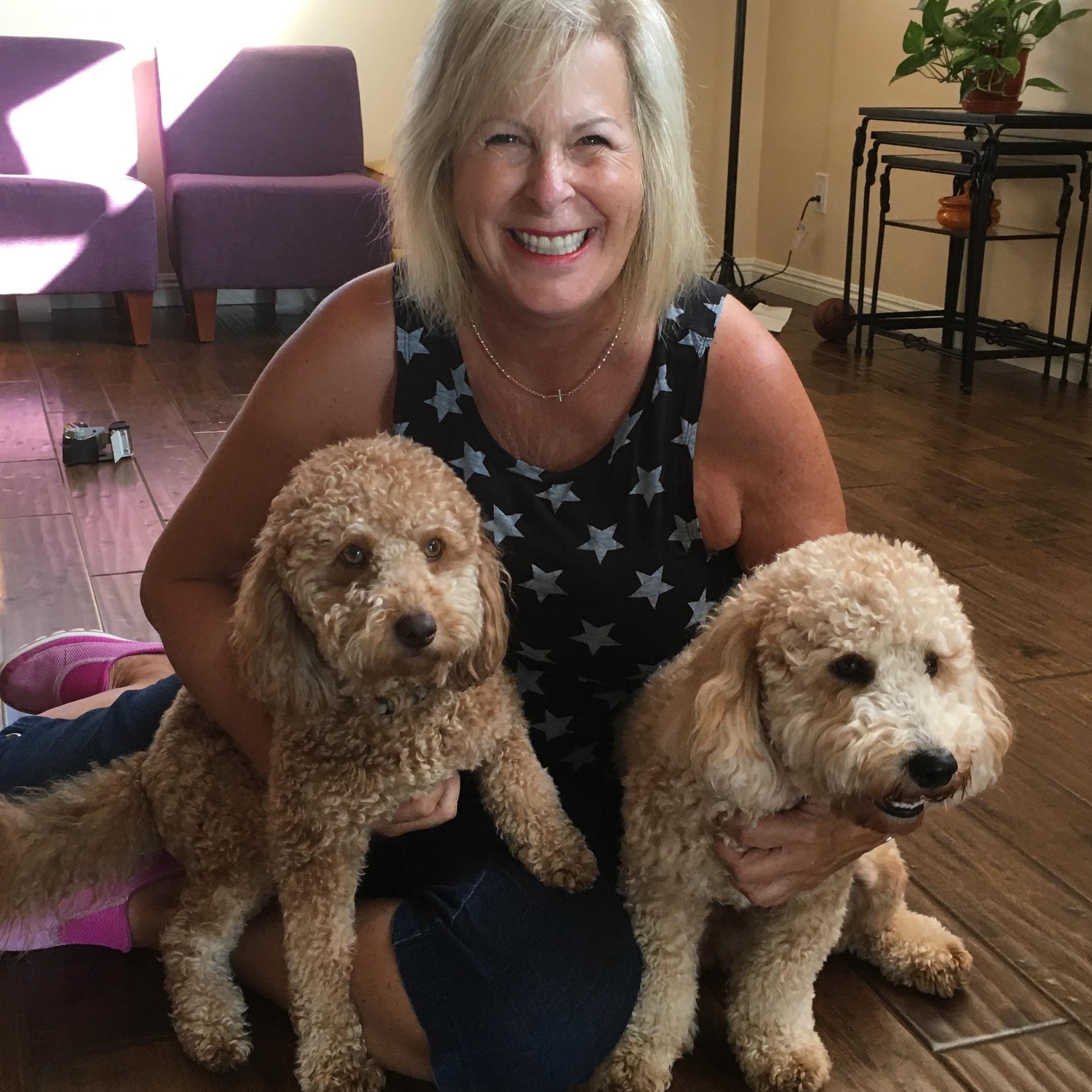 Rose's dog day care
