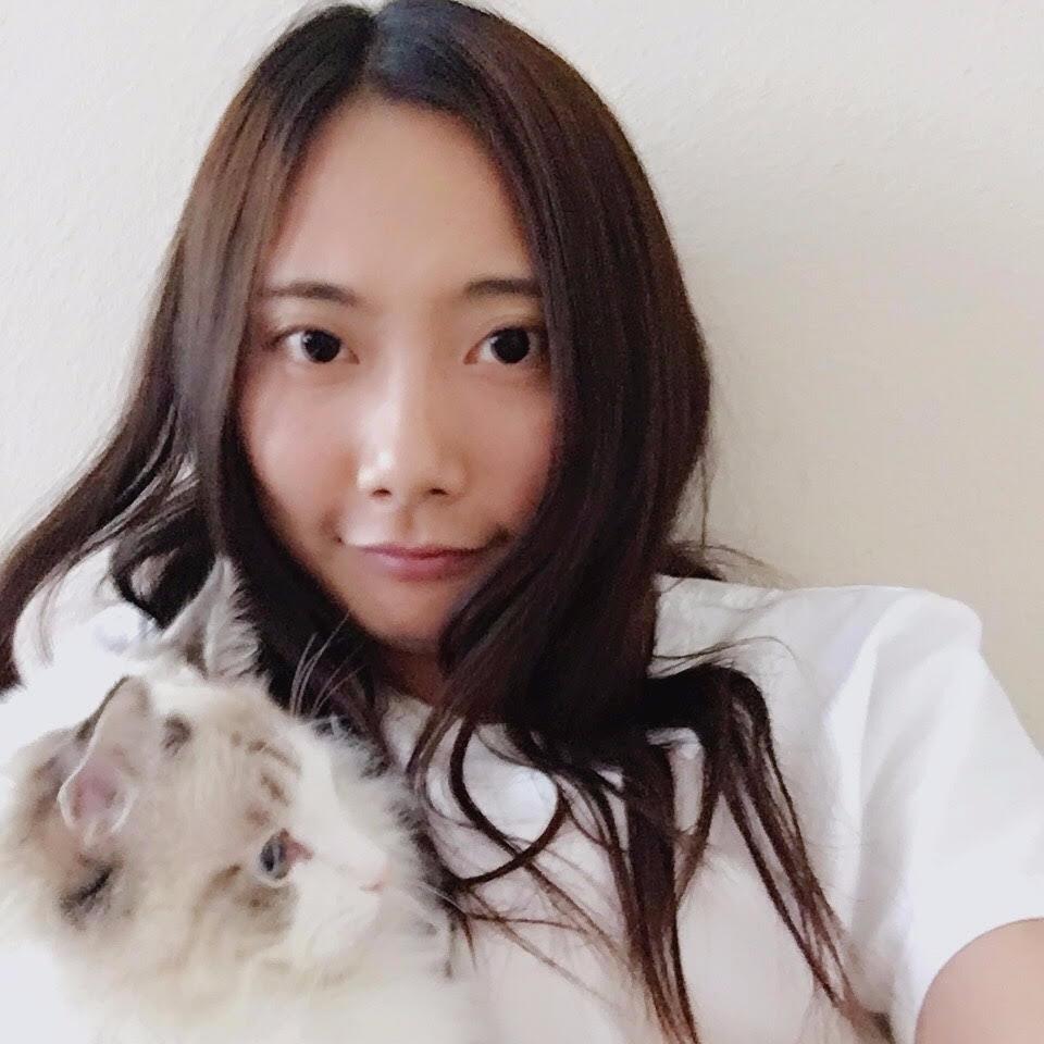 pet sitter Coco