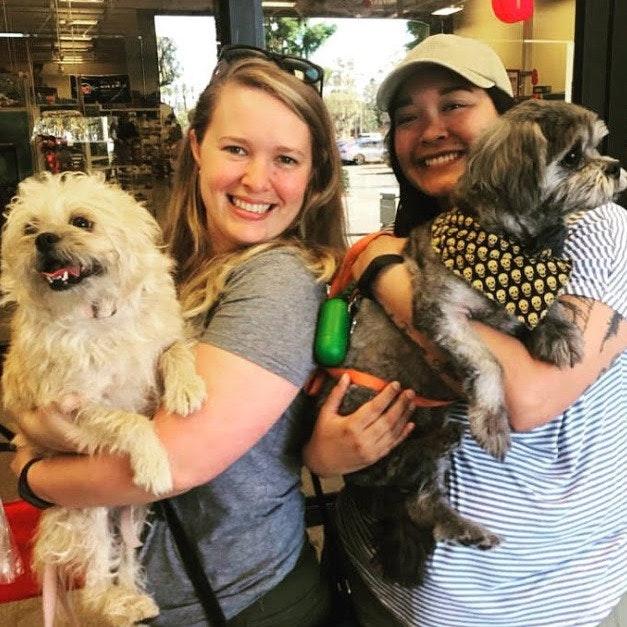 Andrea & Killian's dog day care