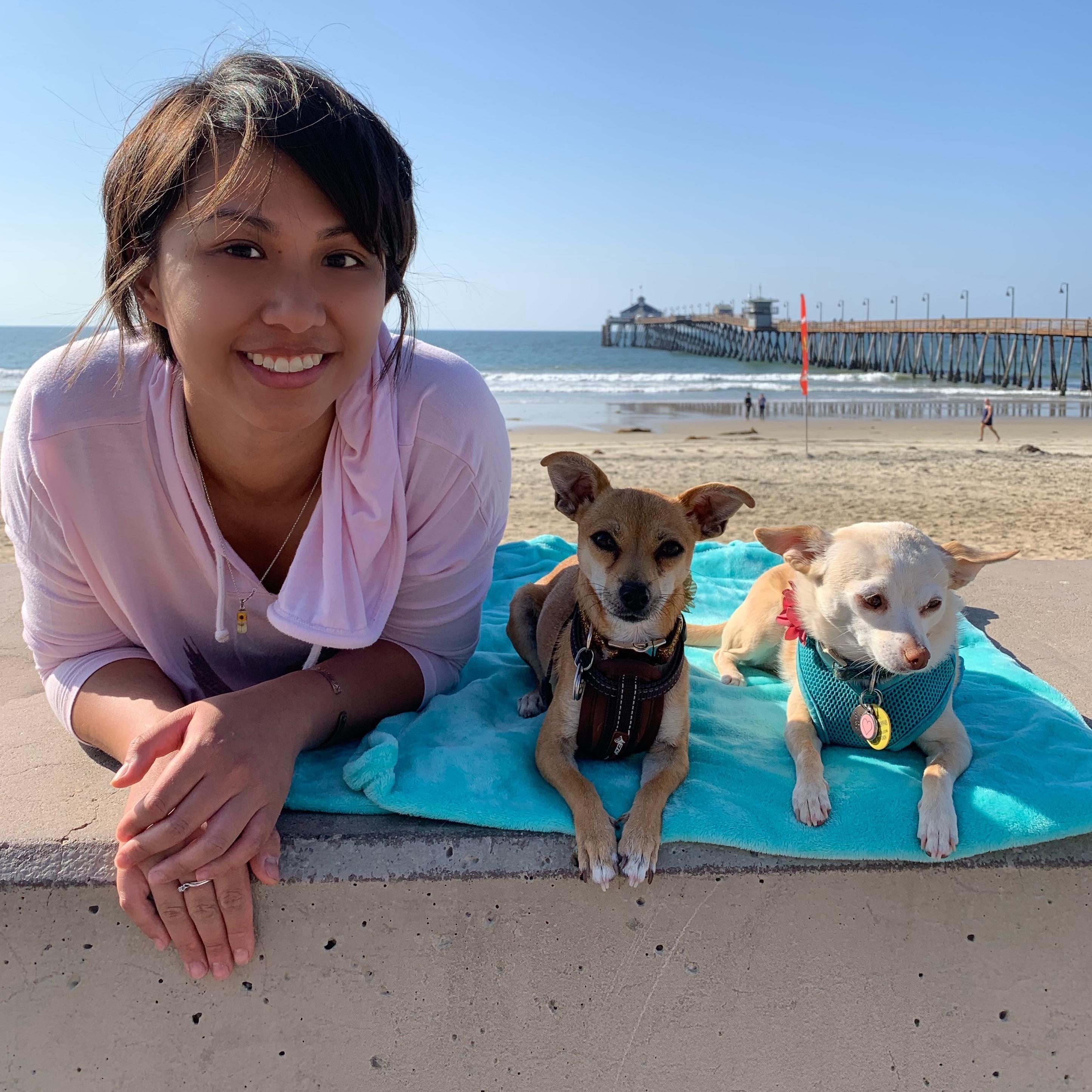 Danalitz's dog day care