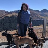Isabel/Bella's dog day care