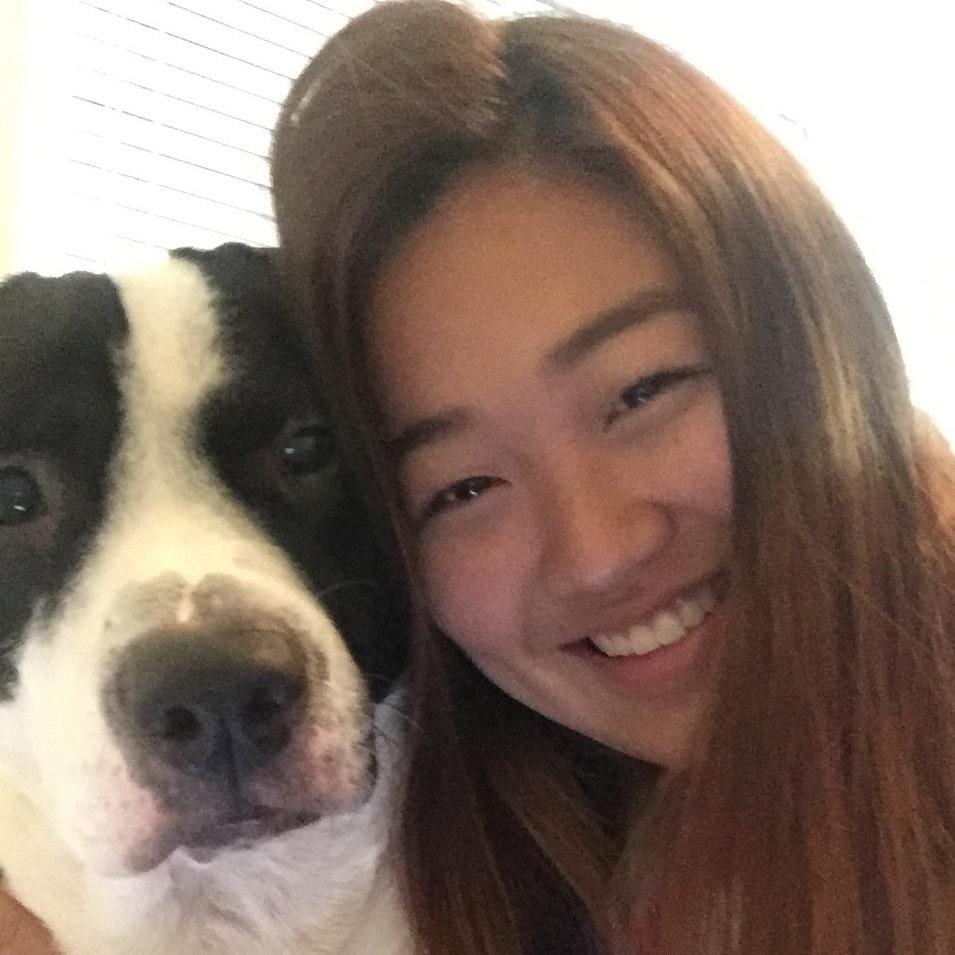 YuJin's dog day care