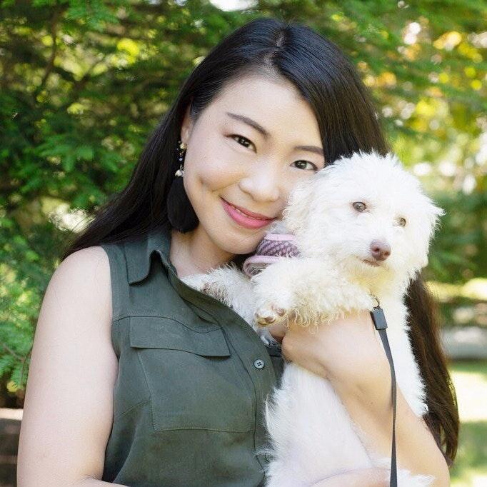 Tao's dog day care
