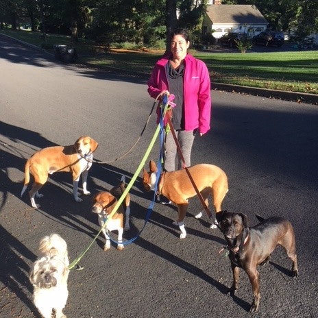 dog walker Christine