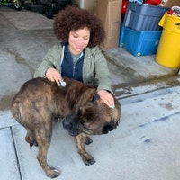 Jhane's dog day care