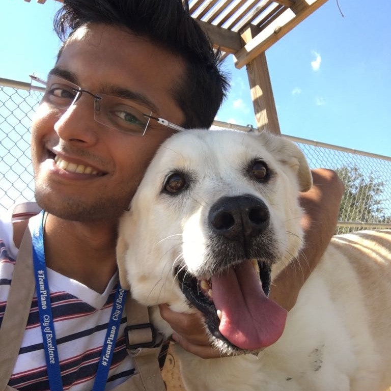 dog walker Siddharth