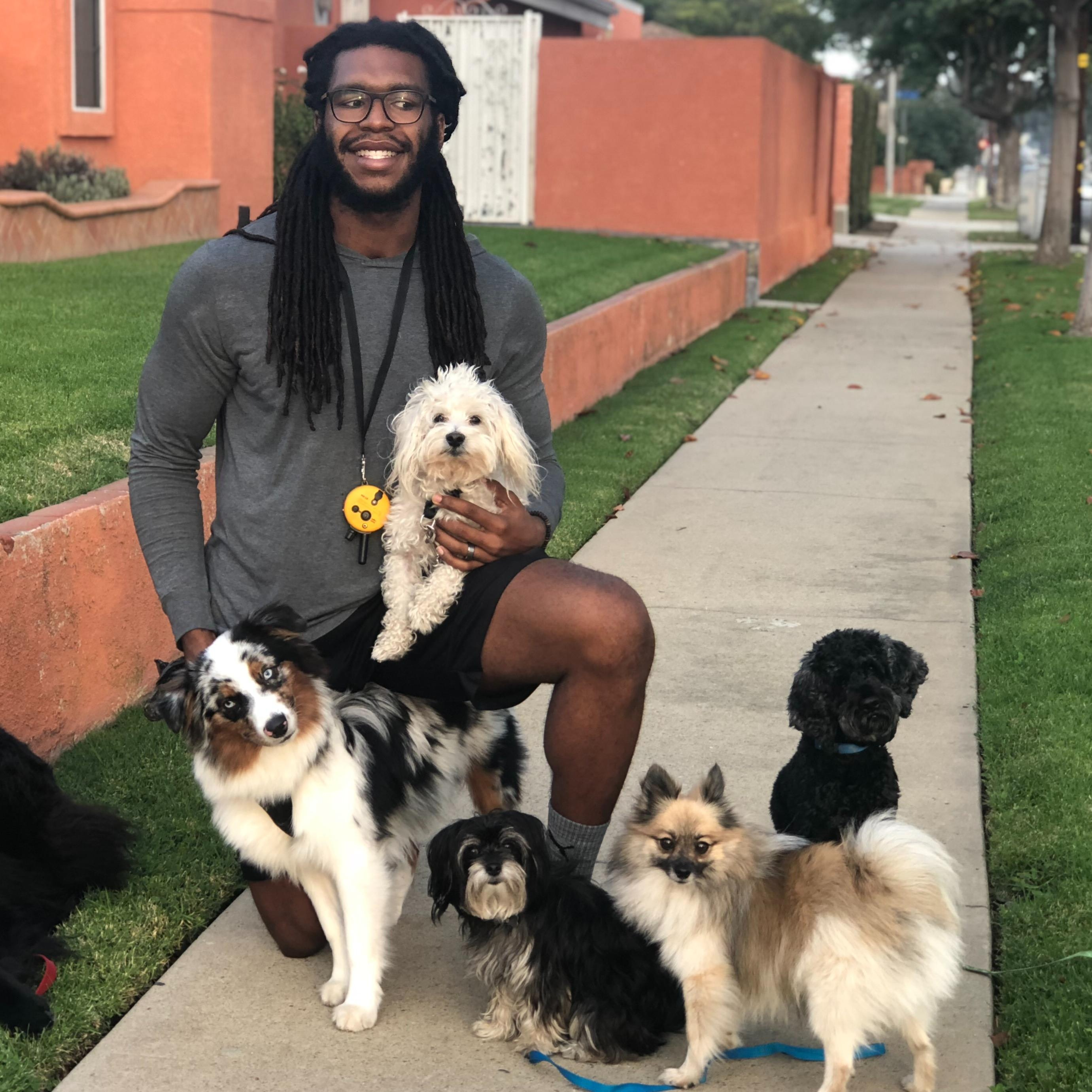 Khris's dog day care