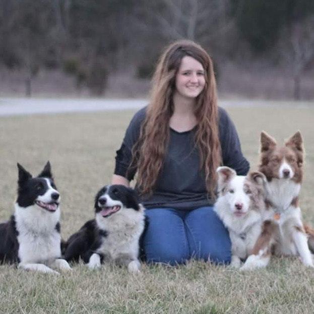 dog walker Regina