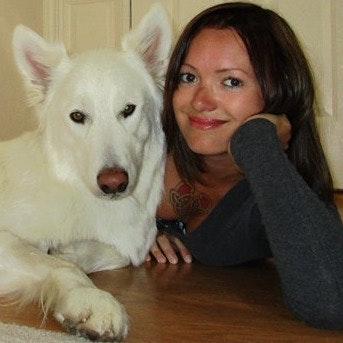 Lenka's dog day care