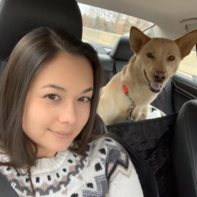 Elisa's dog day care