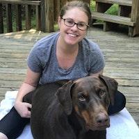 Haley's dog boarding