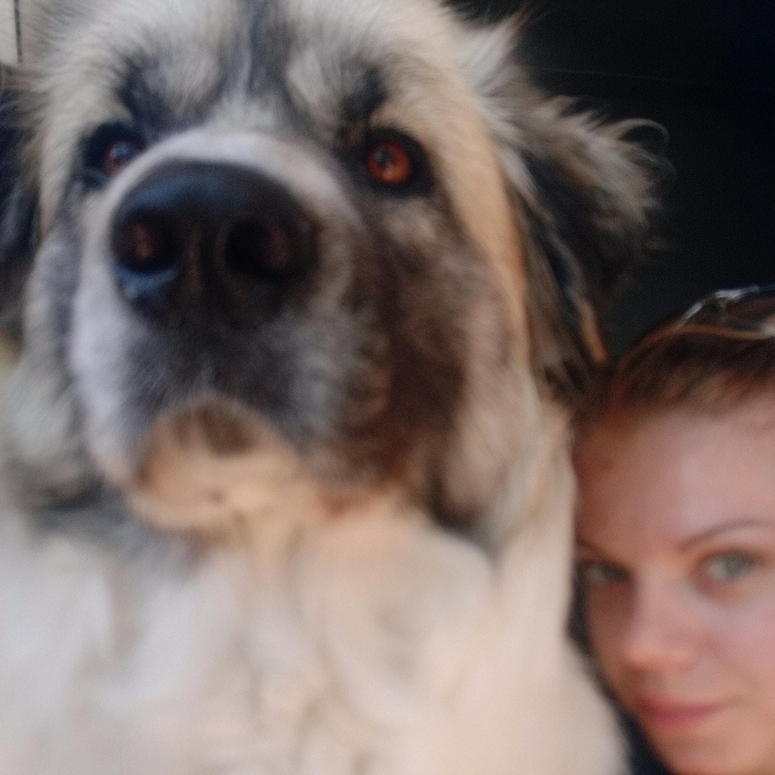 dog walker Kyla