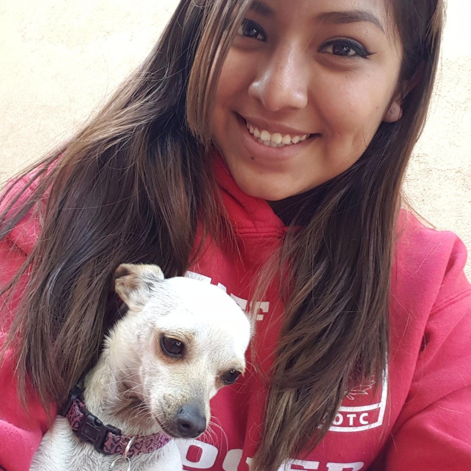 Karilou's dog boarding