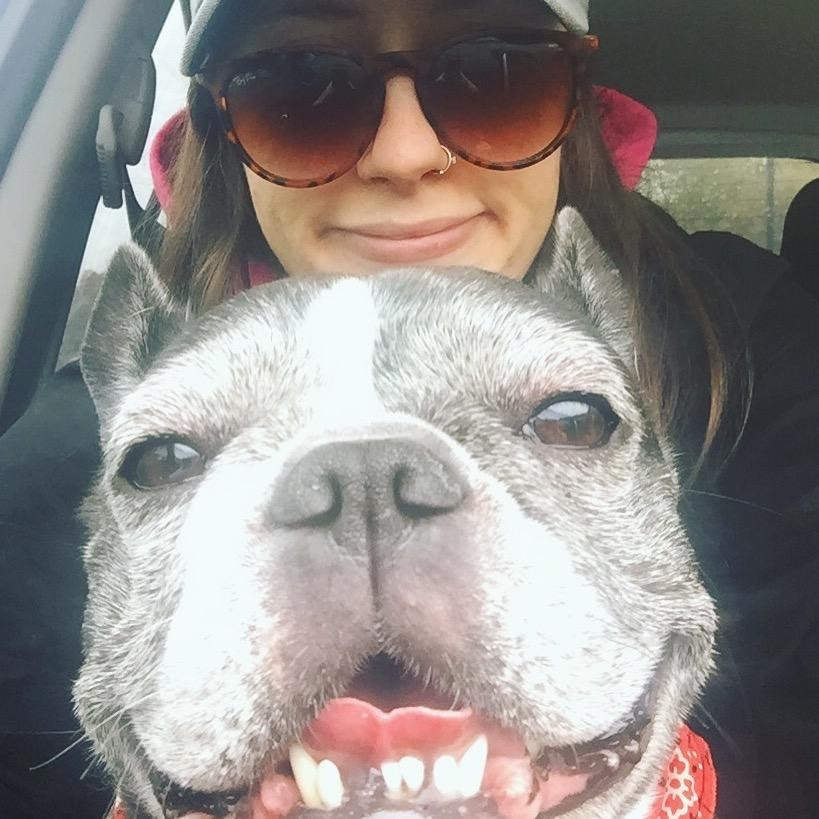 Laura's dog boarding