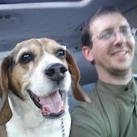 Hudson's Best Dog Boarding Sitters & Dog Walkers | Rover com